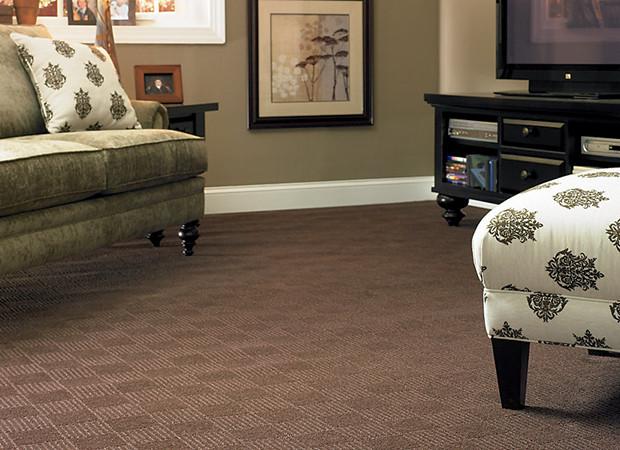 Carpet b b house of carpet for Dark brown carpet living room